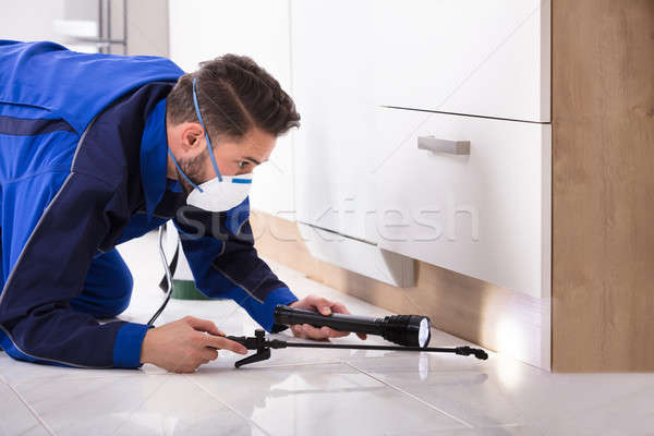 Man Spraying Pesticide In Kitchen Stock photo © AndreyPopov