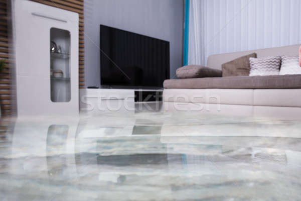 Flooded Floor In The Living Room Stock photo © AndreyPopov