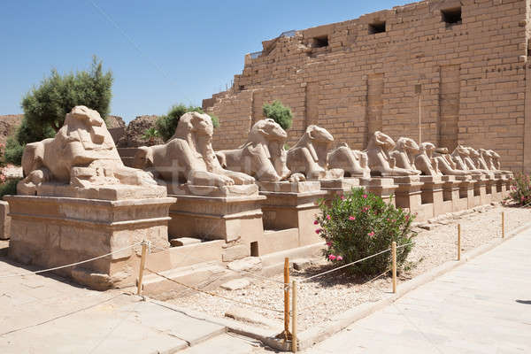 Sphinxes Statue In Karnak Temple Stock photo © AndreyPopov