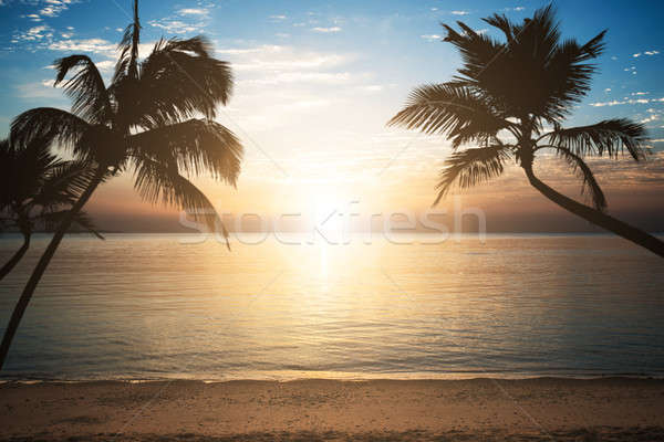 Sea Against Cloudy Sky During Sunset At Egypt Stock photo © AndreyPopov