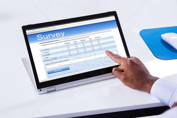 Zdjęcia stock: Strony · nadzienie · badanie · formularza · laptop