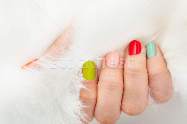 Woman's Hand Holding Fur Stock photo © AndreyPopov