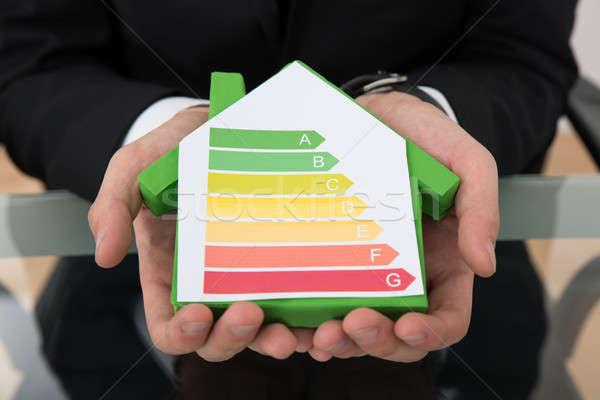 üzletember mutat energia hatékony diagram ház Stock fotó © AndreyPopov