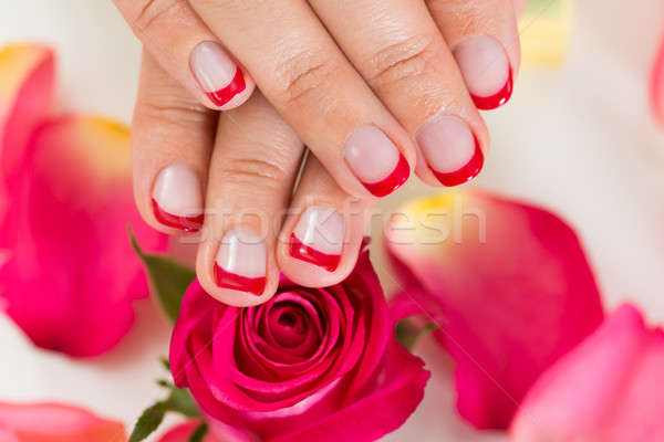 Hands With Manicured Nail Varnish Placed On Roses Stock photo © AndreyPopov