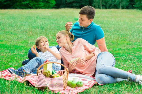 Family Having Picnic In The Park Stock photo © AndreyPopov