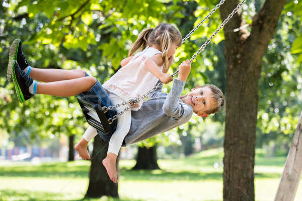 Brother and Sister Enjoying On Swing In The Park Stock photo © AndreyPopov