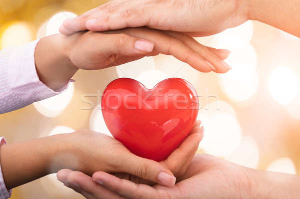 Hands Caring Red Heart Shape Stock photo © AndreyPopov