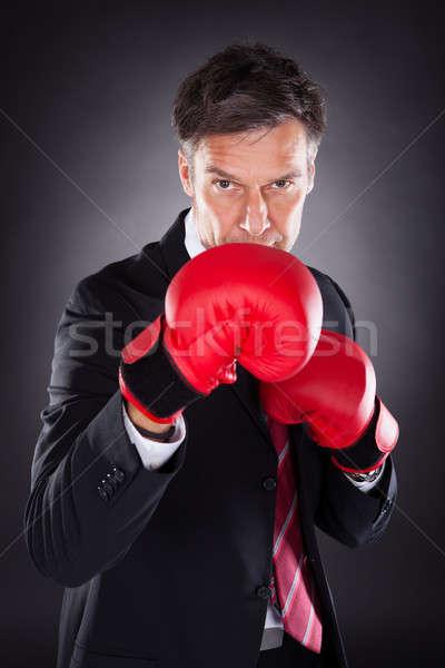 бизнесмен красный боксерские перчатки портрет зрелый Сток-фото © AndreyPopov
