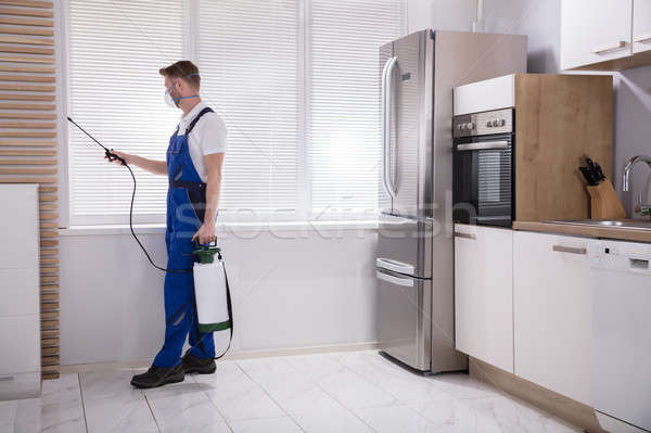 Exterminator Worker Spraying Insecticide Chemical Stock photo © AndreyPopov
