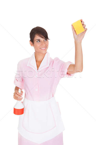 Female Maid With Sponge And Bottle Stock photo © AndreyPopov
