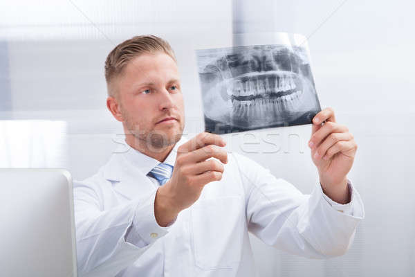 Doctor studying an x-ray film holding it up to the light Stock photo © AndreyPopov