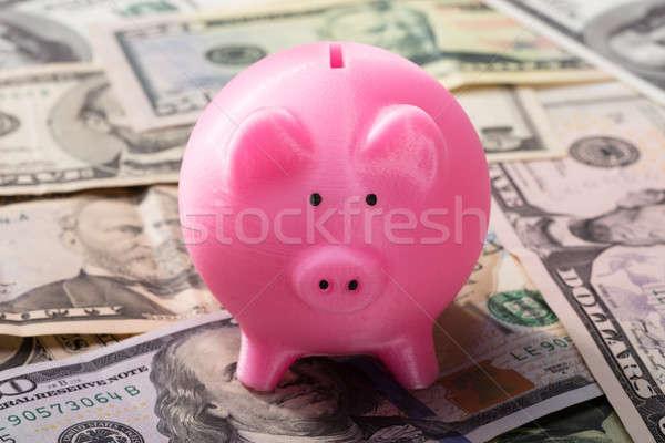 Piggy bank americano notas rosa financiar Foto stock © AndreyPopov