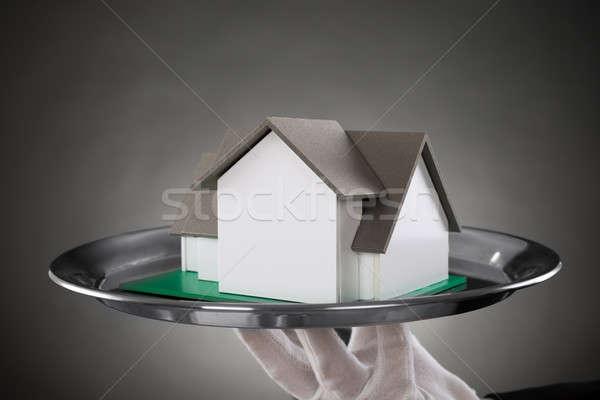 Közelkép komornyik ház modell rozsdamentes acél tálca Stock fotó © AndreyPopov