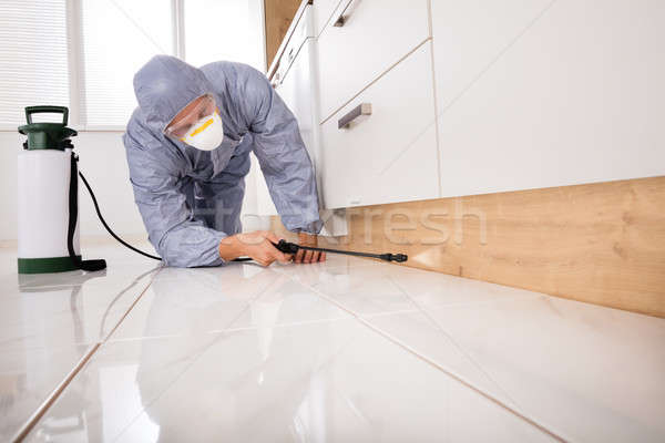 Exterminator Spraying Pesticide In Kitchen Stock photo © AndreyPopov