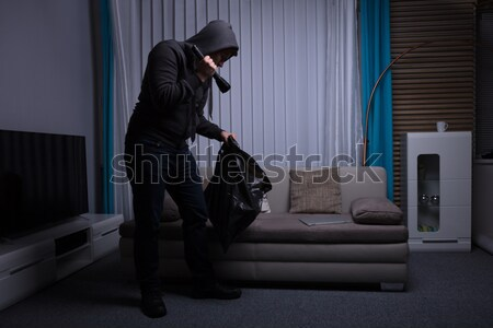 Räuber stehen Wohnzimmer halten Taschenlampe Computer Stock foto © AndreyPopov