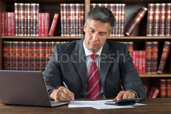 Accountant Doing Paperwork Stock photo © AndreyPopov