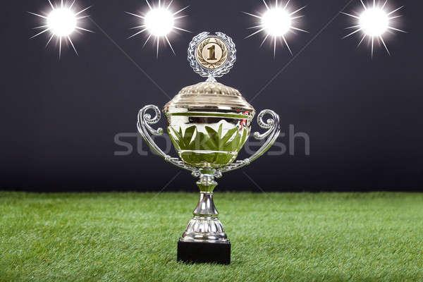 Trofee beker groene toonhoogte gras Stockfoto © AndreyPopov