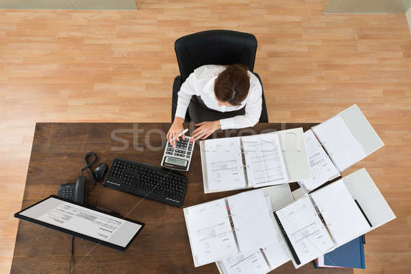 Imprenditrice fiscali view giovani ufficio Foto d'archivio © AndreyPopov