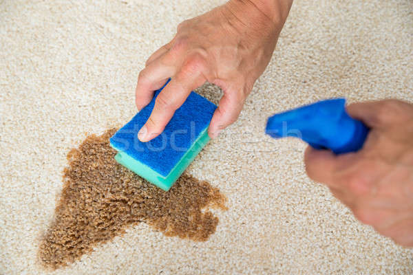 Janitor Cleaning Stain On Carpet With Sponge Stock photo © AndreyPopov