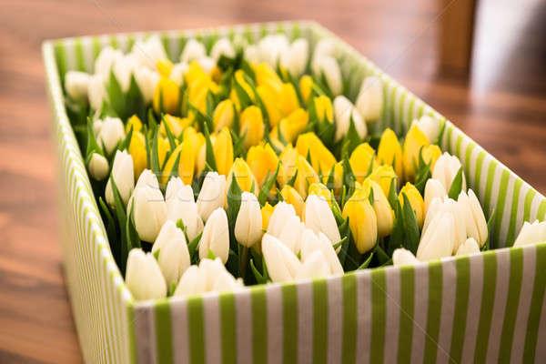 Tulips In The Open Box Stock photo © AndreyPopov