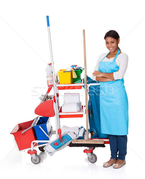 Female Cleaner With Cleaning Equipment Stock photo © AndreyPopov