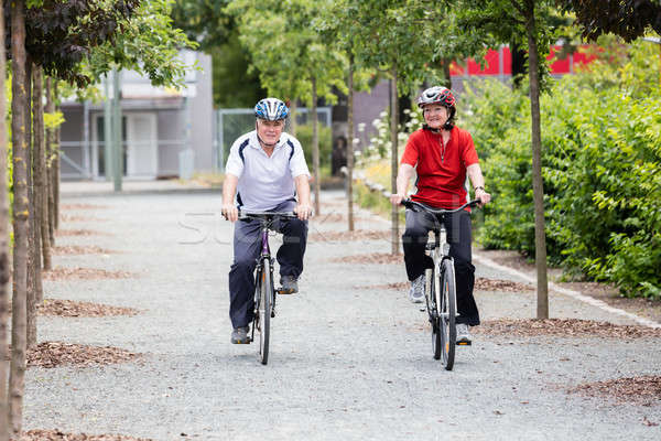 Sorridente casal de idosos ciclismo parque idoso manhã Foto stock © AndreyPopov