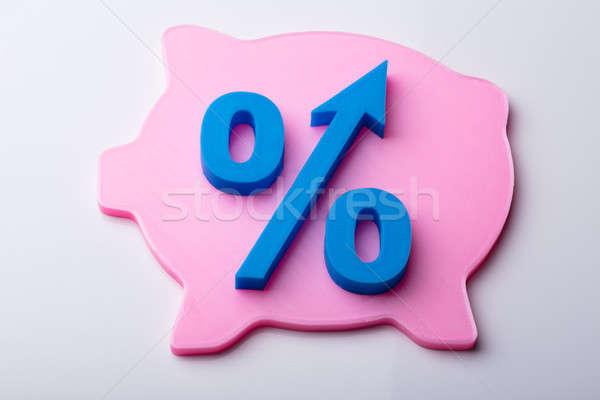 Blauw percentage symbool roze spaarpot geïsoleerd Stockfoto © AndreyPopov