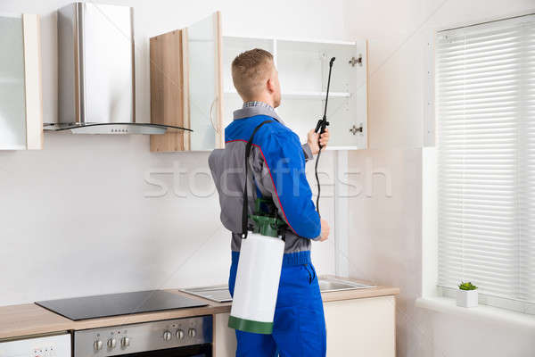 Worker Spraying Insecticide On Shelf Stock photo © AndreyPopov