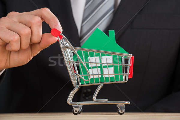 Businessman Holding Shopping Trolley With Green Paper House Stock photo © AndreyPopov