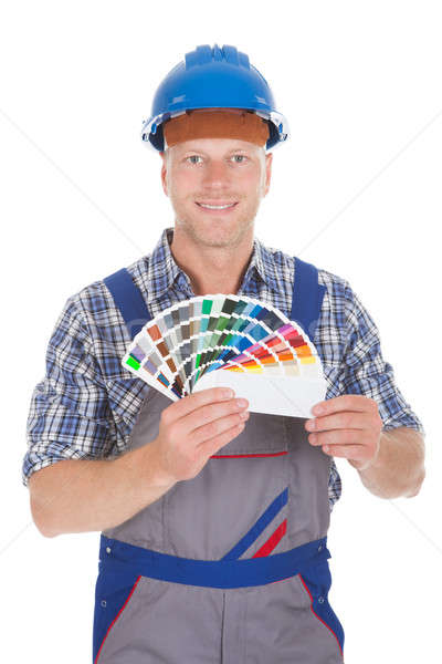 Handyman Showing Color Swatches Stock photo © AndreyPopov