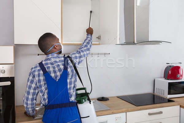 Worker Spraying Pesticide With Sprayer Stock photo © AndreyPopov