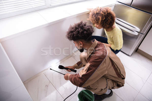 Pest Control Worker Using Torch While Spraying Insecticide Stock photo © AndreyPopov