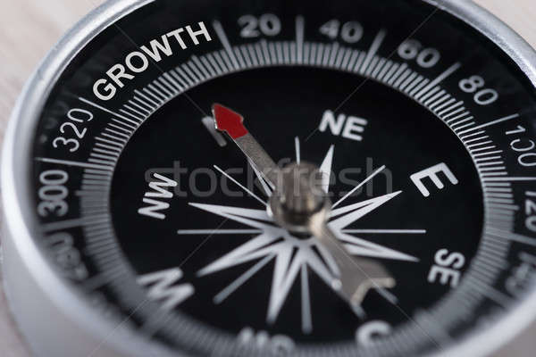 Compass Indicating Growth Stock photo © AndreyPopov