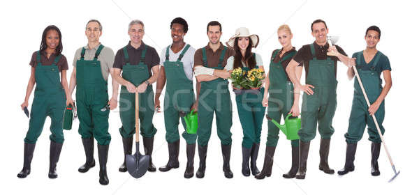 Group Of Gardener Workers Stock photo © AndreyPopov