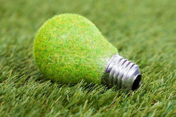 Energy Saving Bulb On Green Grass Stock photo © AndreyPopov