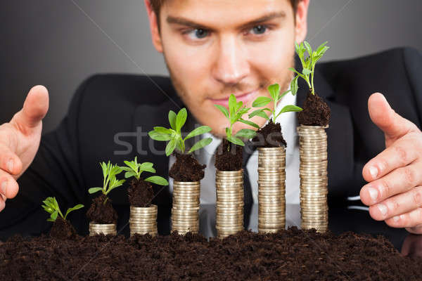 Businessman Protecting Coins In Saplings Stock photo © AndreyPopov