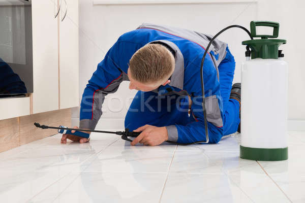 Stock photo: Male Worker Spraying Pesticide On Cabinet
