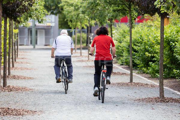 Casal ciclismo parque casal de idosos homem Foto stock © AndreyPopov
