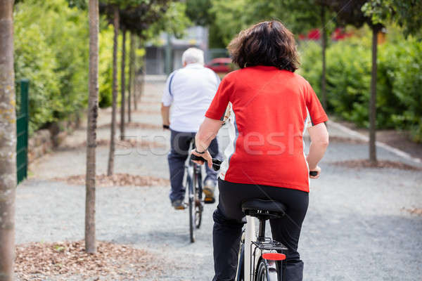 Couple Cycling In Park Stock photo © AndreyPopov