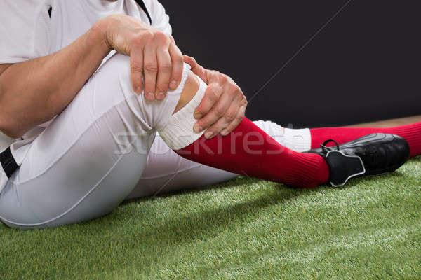 American ranire picior câmp Imagine de stoc © AndreyPopov