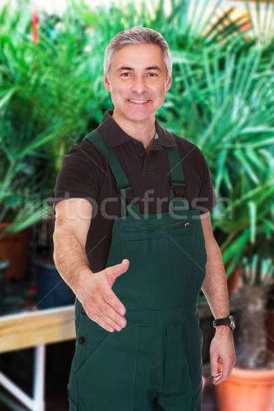 Male Gardener Extending His Hand To Shake Stock photo © AndreyPopov