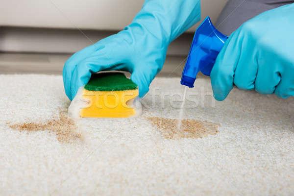 人 洗浄 染色 スポンジ カーペット クローズアップ ストックフォト © AndreyPopov