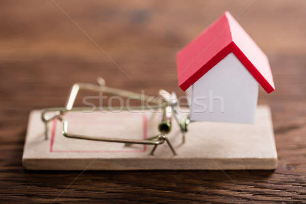 Stock photo: House Model On Mousetrap