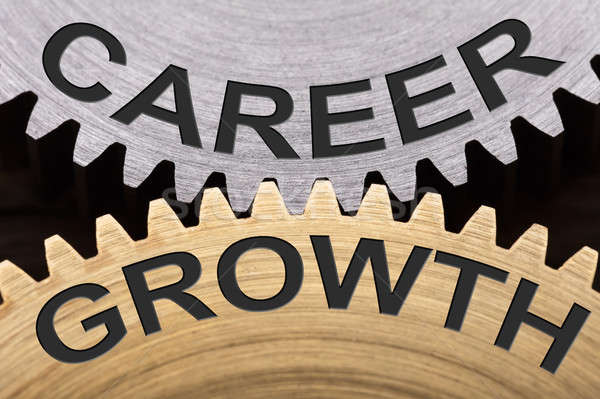 Career Growth Concept On Interlocked Gearwheels Stock photo © AndreyPopov