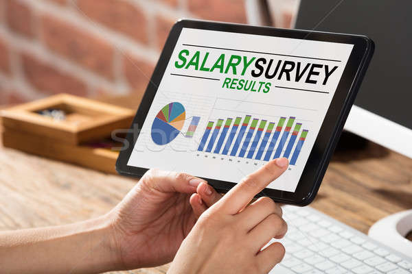 Businessperson Doing Survey On Salary Result Stock photo © AndreyPopov