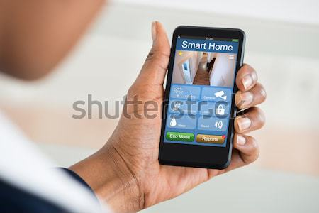 Human Hand Using Mobile Phone In Front Of Security System Stock photo © AndreyPopov