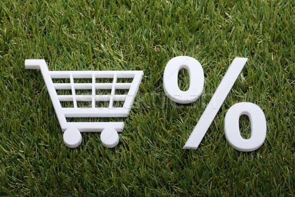 Miniatura carrello percentuale segno erba verde Foto d'archivio © AndreyPopov