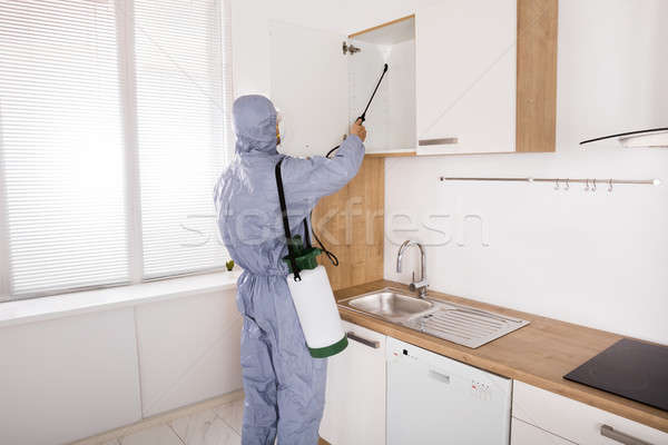 Pest Control Worker Spraying Pesticide On Shelf Stock photo © AndreyPopov