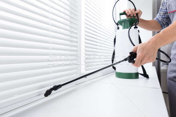 Worker Spraying Insecticide On Windowsill Stock photo © AndreyPopov