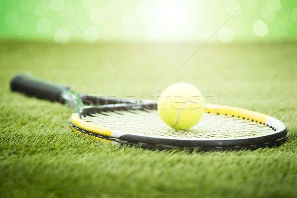 Teniszütő labda fű közelkép zöld fitnessz Stock fotó © AndreyPopov